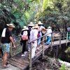 Tour del Arroz Parque Nacional del Arroz Colombia
